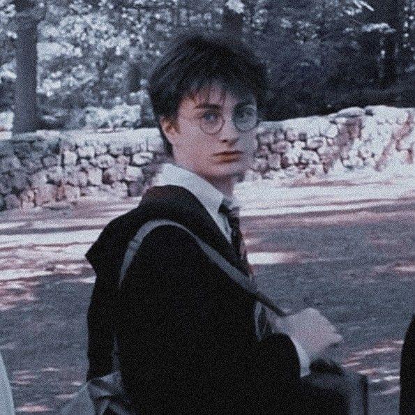 Harry Potter Icon In 2020 Harry Potter Icons Harry Potter Pictures Daniel Radcliffe Harry Potter