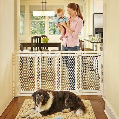 Dog · Indoor Dog Gates