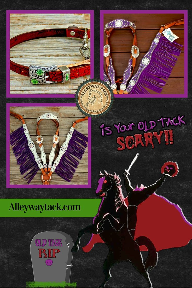 Does Your Old Tack Look SCARY!! Get new Tack at Alleyway Tack! $40 OFF all orders over $250.00 PROMO CODE: SCARYTACK15   or $20 OFF all orders over $100.00 HURRY!! Offer expires October 12, 2015