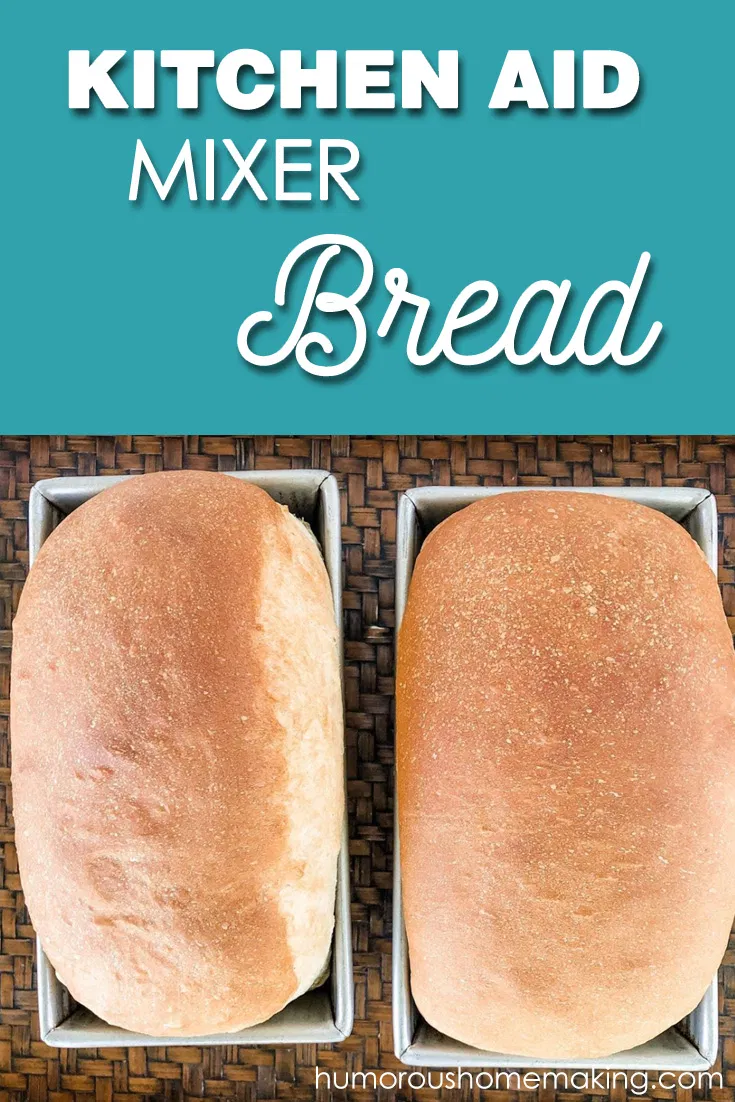 Kitchen Aid Mixer Bread - Humorous Homemaking | Recipe in ...