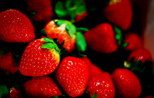 Local Farmer *NEW* STRAWBERRY GIANT*,LARGEST FRUIT,EVERBEARING 200 SEEDS
