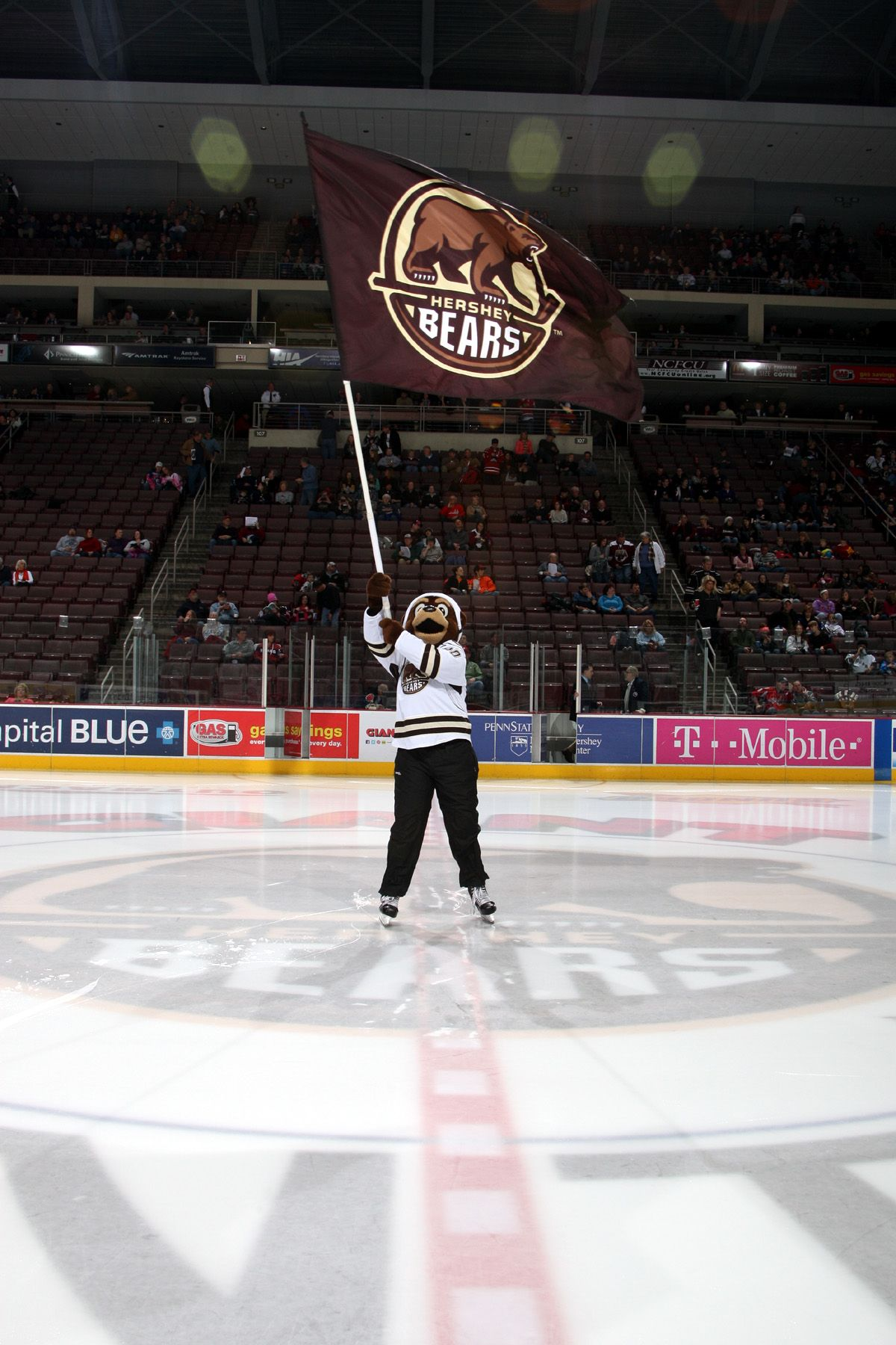 02 21 15 Coco The Bear With His Hershey Bears Flag At Center Ice During Pre Game Photo Courtesy Of Justsports Photography Hershey Bears Bear Hershey