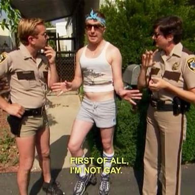 I absolutely LOVE Terry from Reno 911 lmao
