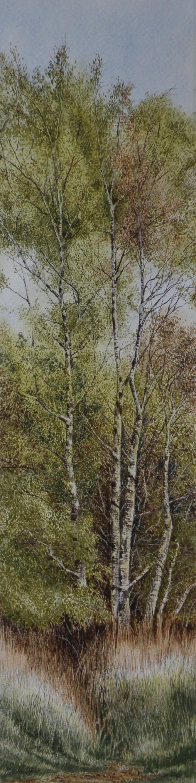 Wicken Willows II