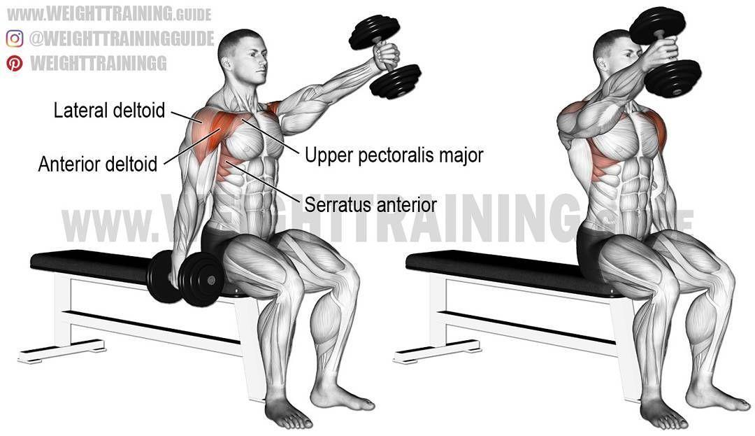 Debuter La Musculation A La Maison Shoulder Workout Dumbell
