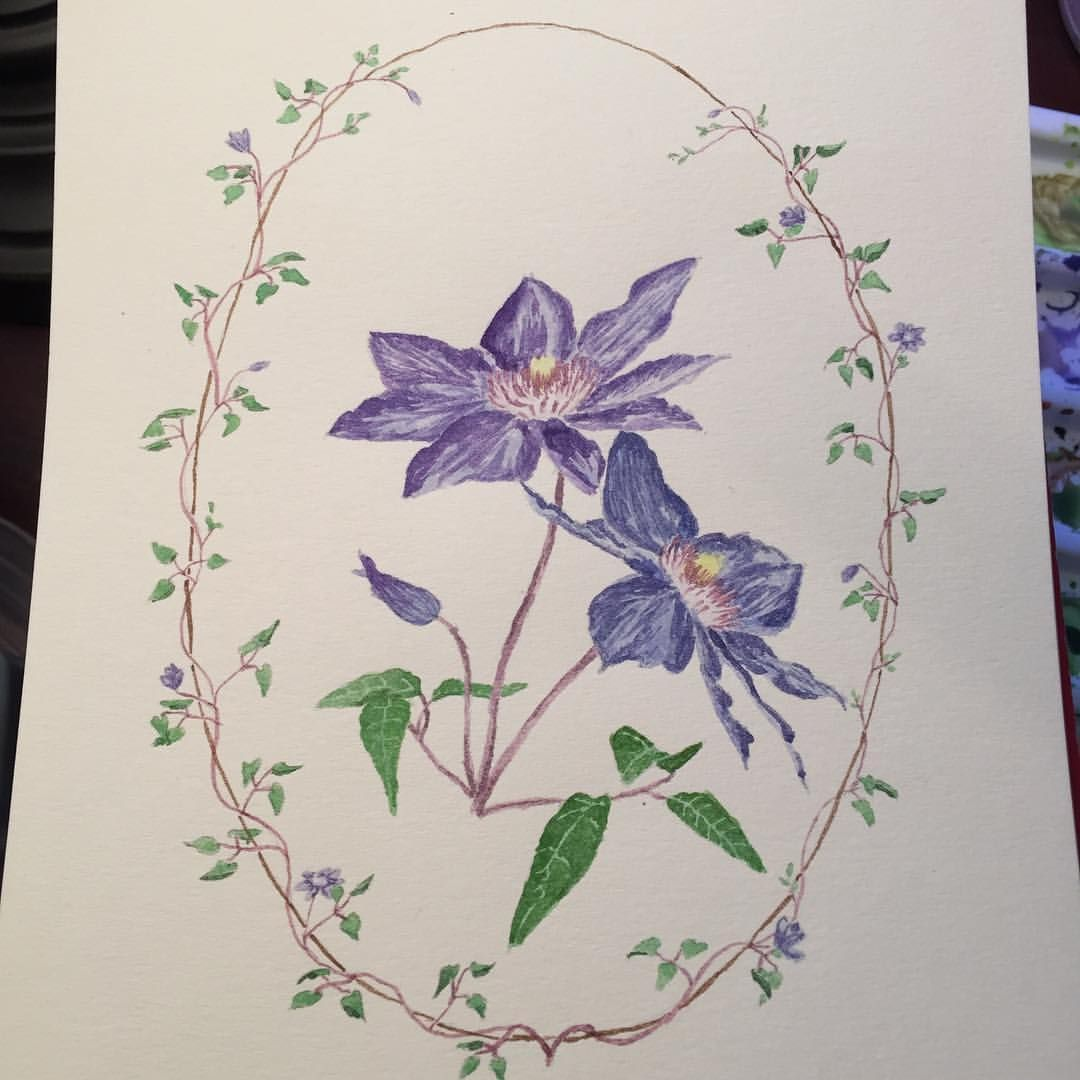 Clematis today for #flowerfeb2016 I really like how this one turned out!  Can't wait to see how much I've progressed at the end of the month!!  #watercolor #watercolour #sketchbook #focusfebruary #florals #flowers #watercolor_art #watercolorflowers #watercolorflorals