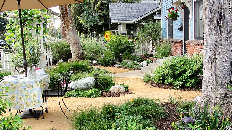 Landscapers specializing in native California designs see business boom as incentives help homeowners switch to more sustainable lawns.