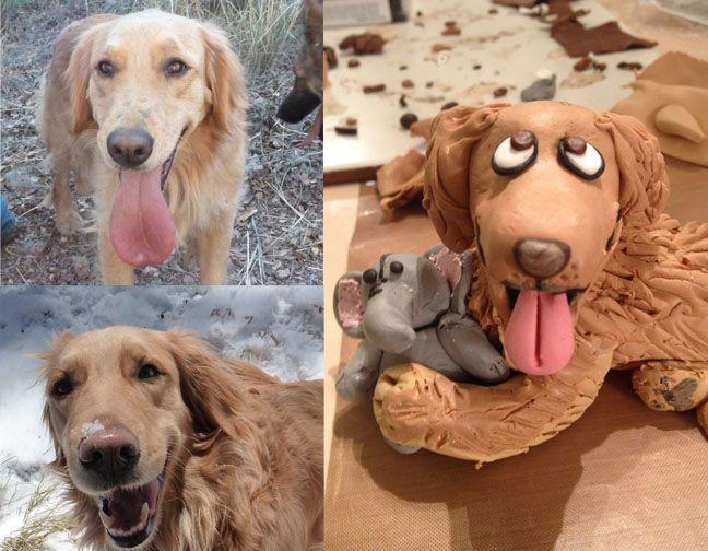 Las Vegas Nv Golden Retriever Meet Ammo A Dog For Adoption