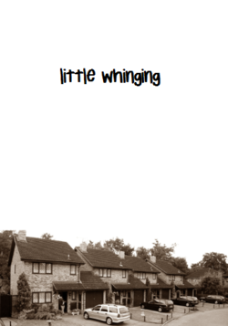 Little Whinging Harry Potter Obsession Harry Potter Series Harry Potter Hermione Granger