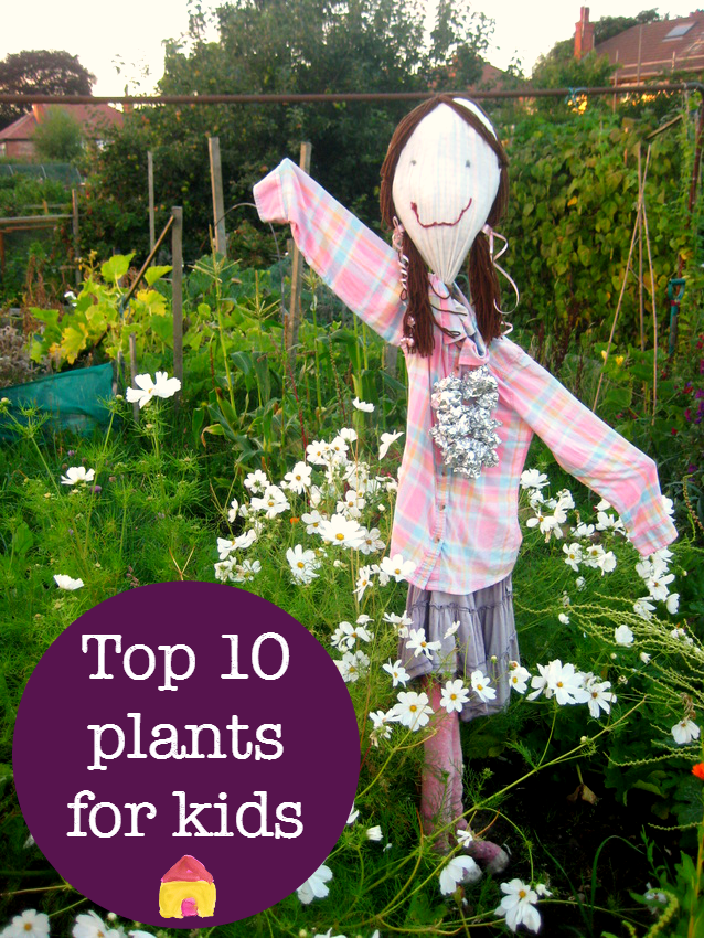 Perfect Easy Plants To Grow With Children