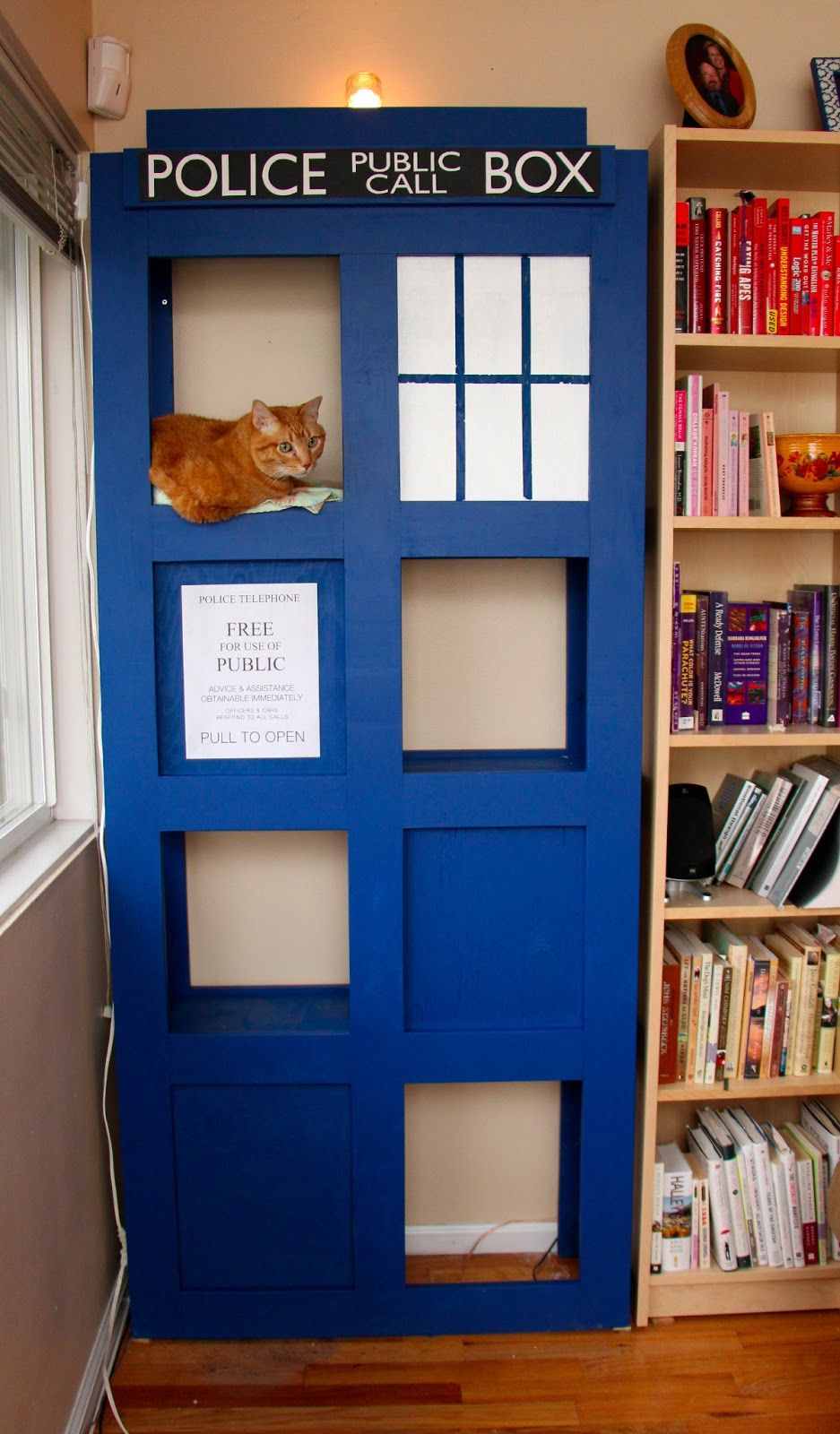 Kitty Tardis With Images Cat House Diy Cat Tree Cat House