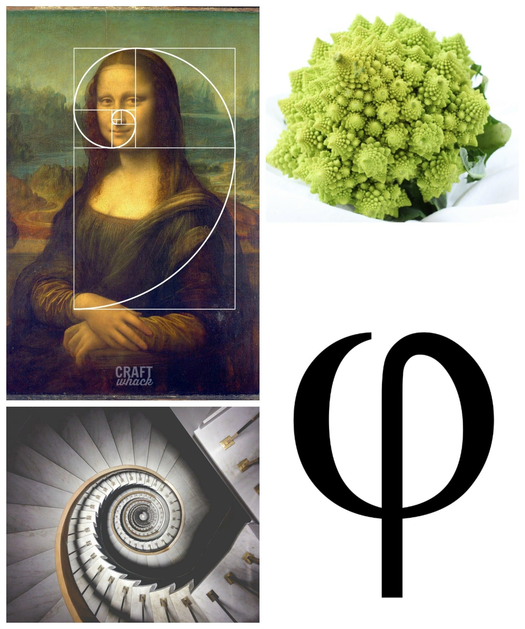 The Golden Ratio In Art Is One Of The Coolest Things You