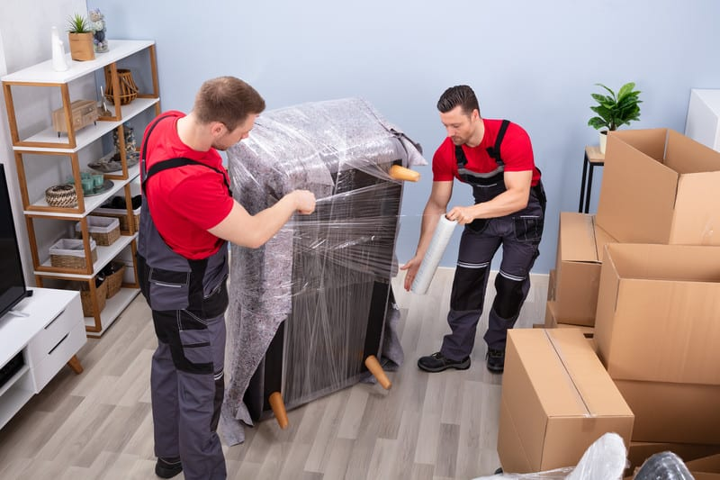 Pin on Movers
