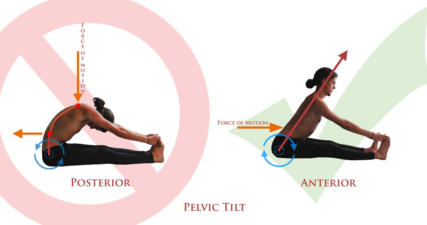 sitting tilt Yoga knowledge Pinterest Yoga, Posture