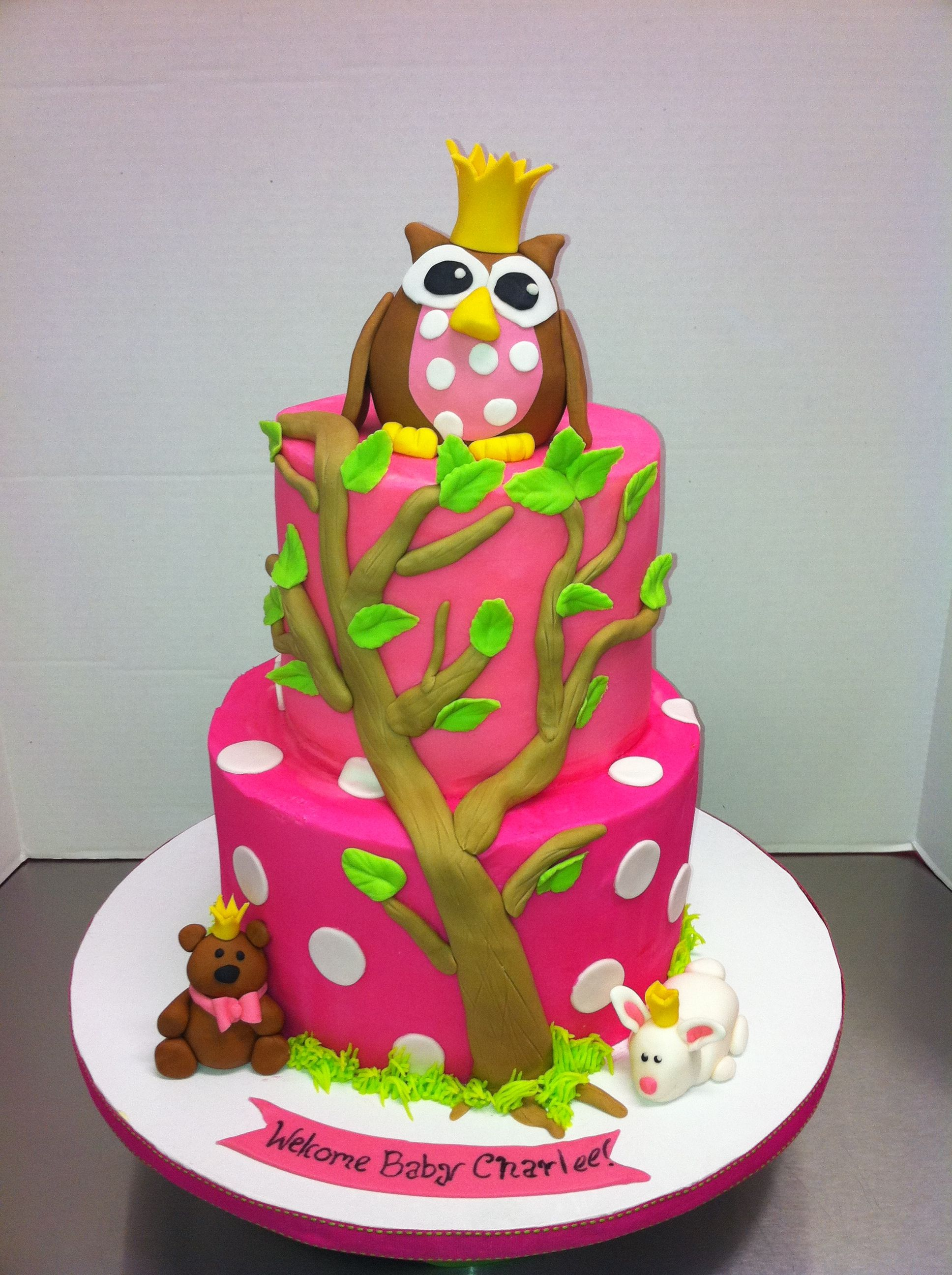 Baby owl cake the cake is iced in butter cream and the