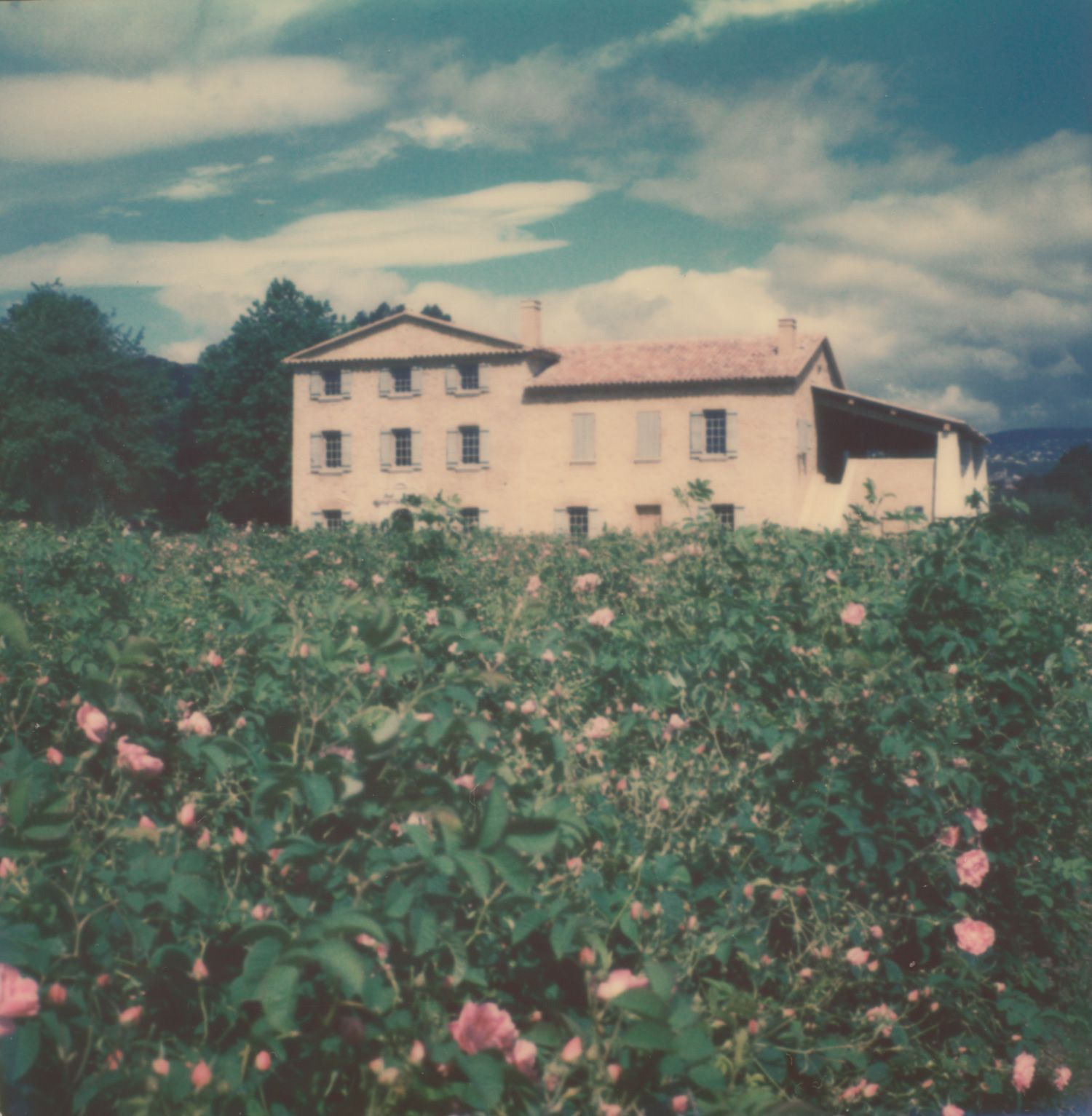 Provence in Polaroid