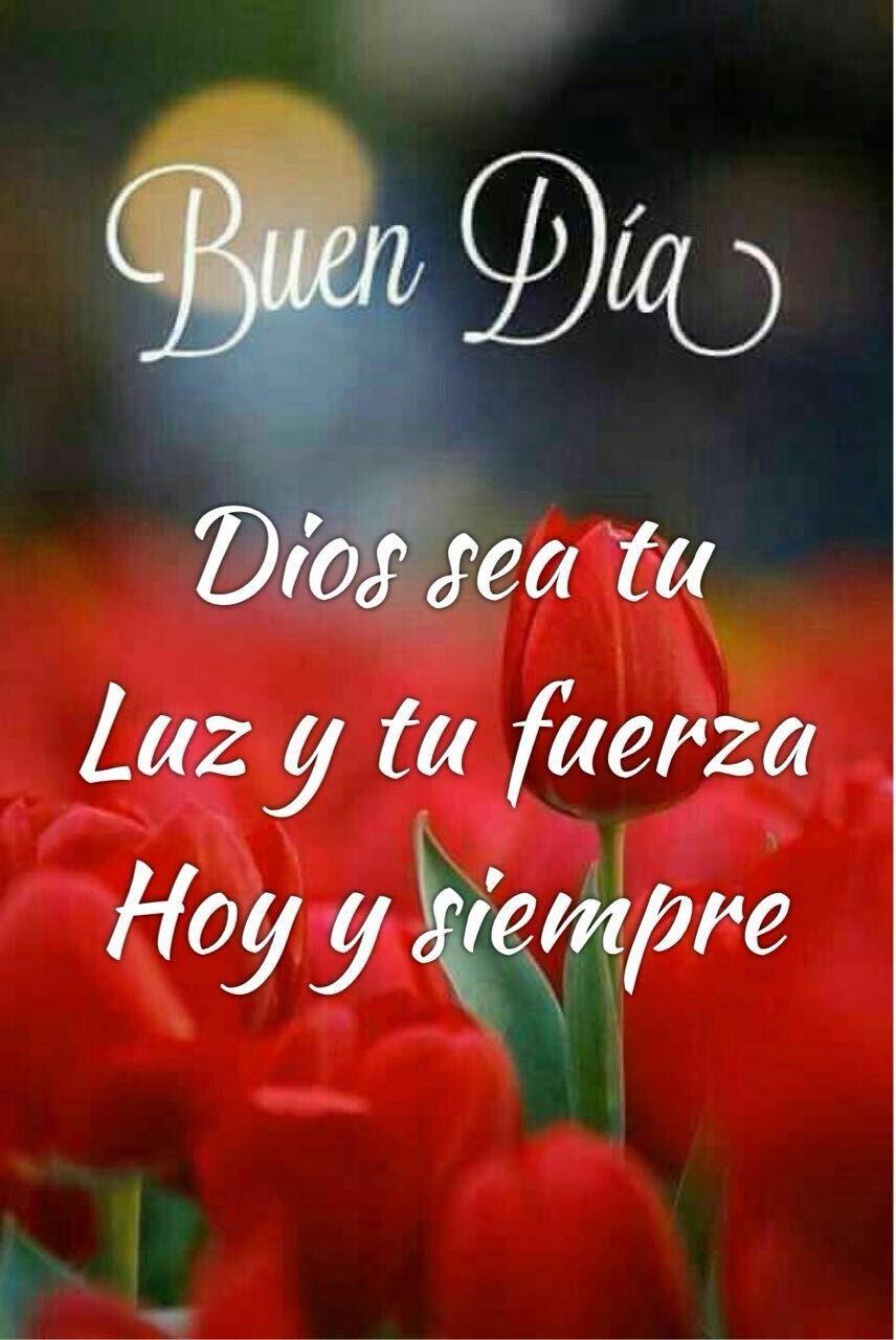 Bonito Día Buenos Días Dios Saludos De Buenos Dias Y