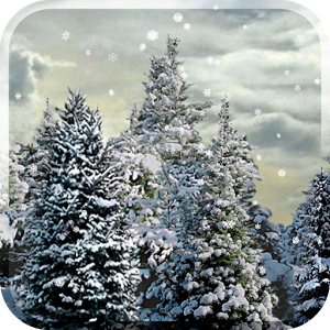 |  Snowfall is most beautiful live wallpaper featuring gentle snowflakes falling overtop swaying pine trees. Not movie, this wallpaper is rendered in OpenGL with full support for both phones & tablets in any orientation! Tilt device to influence the direction of the snow! If you enjoy this, support the developers by getting the paid version. The paid version has a full settings screen with lots of options for the Christmas lights, time of day, santa sightings, light colors, & more!