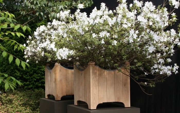 Ewerbeck Square Wood Planter By Out Standing, Gardenista. Trelliage.