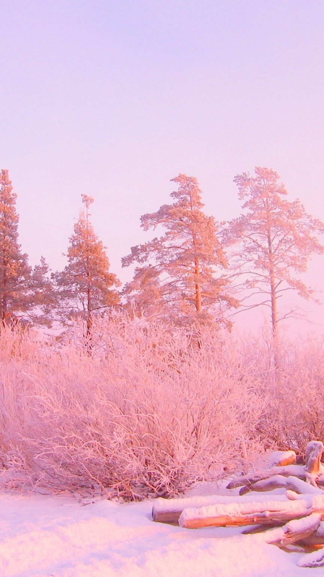 Download Wallpaper Mac Winter - 77b8e7a3476d17fa210756d242fa8e11  Pictures_26394.jpg