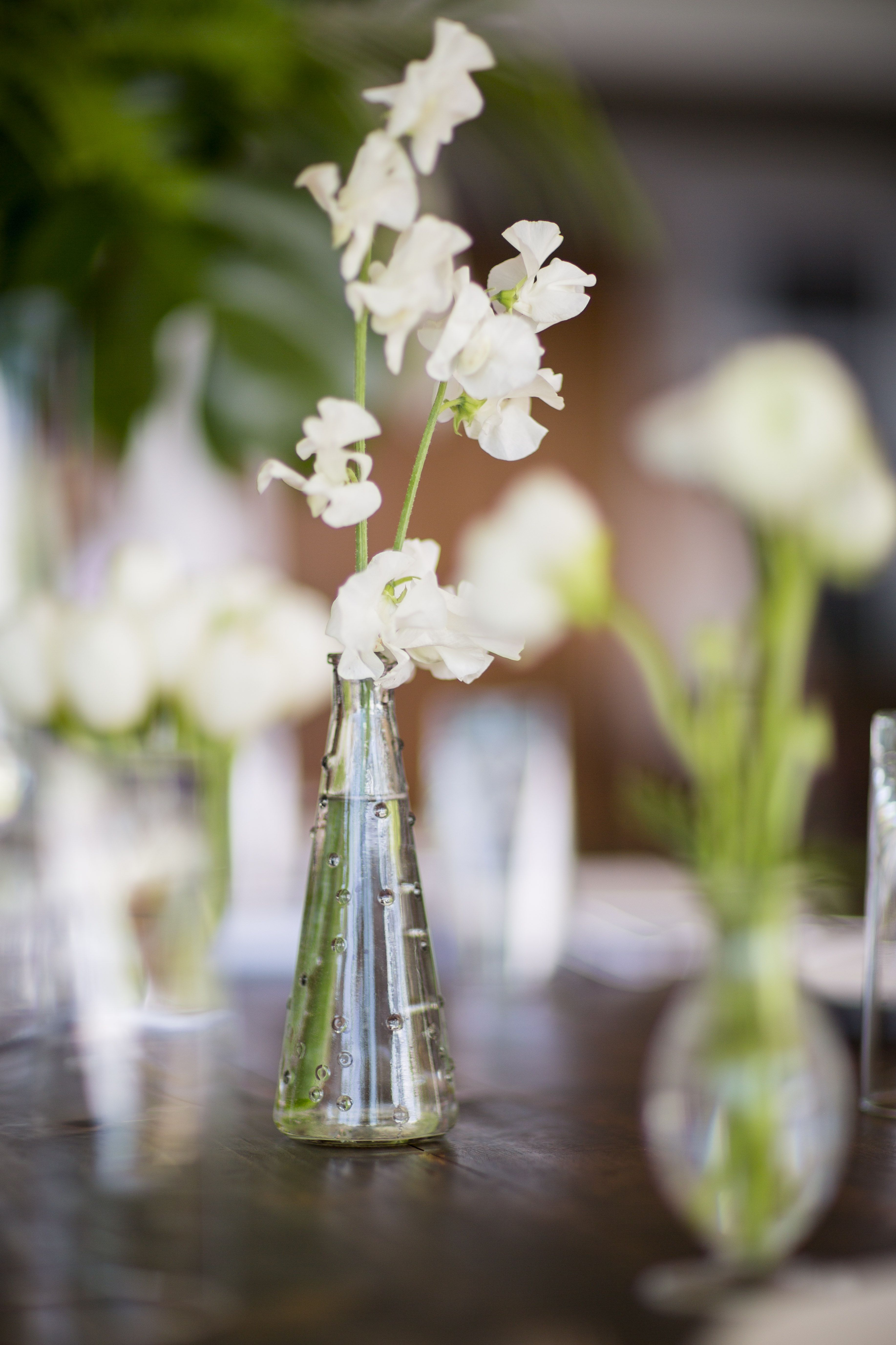 wedding centerpieces bud vases with white blooms bud on sweet dreams for your home plants decoration precautions and options id=68746