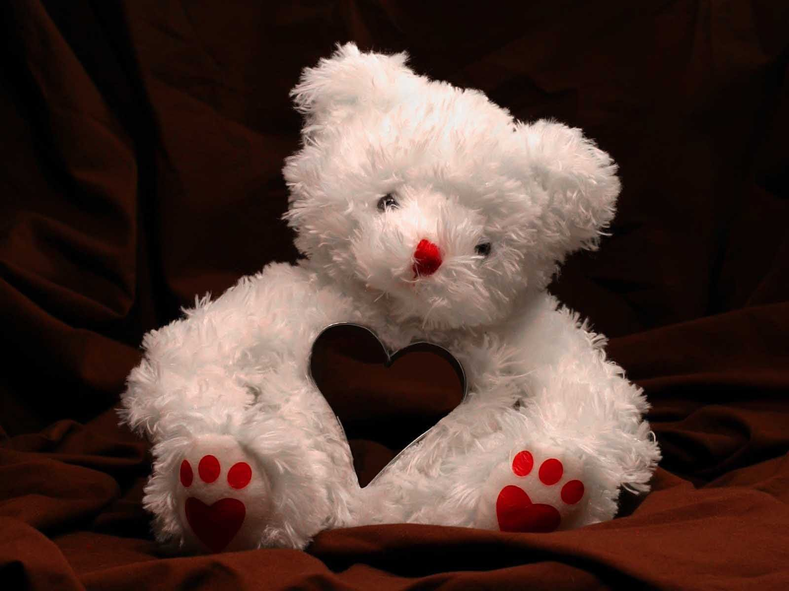 Baby Bear Wallpaper Teddy Bear Wallpaper Teddy Bear Day Teddy Bear Images