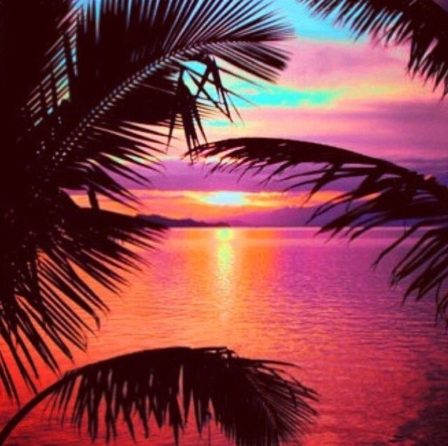 amazing tropical sunset summer sunset scenic tropical