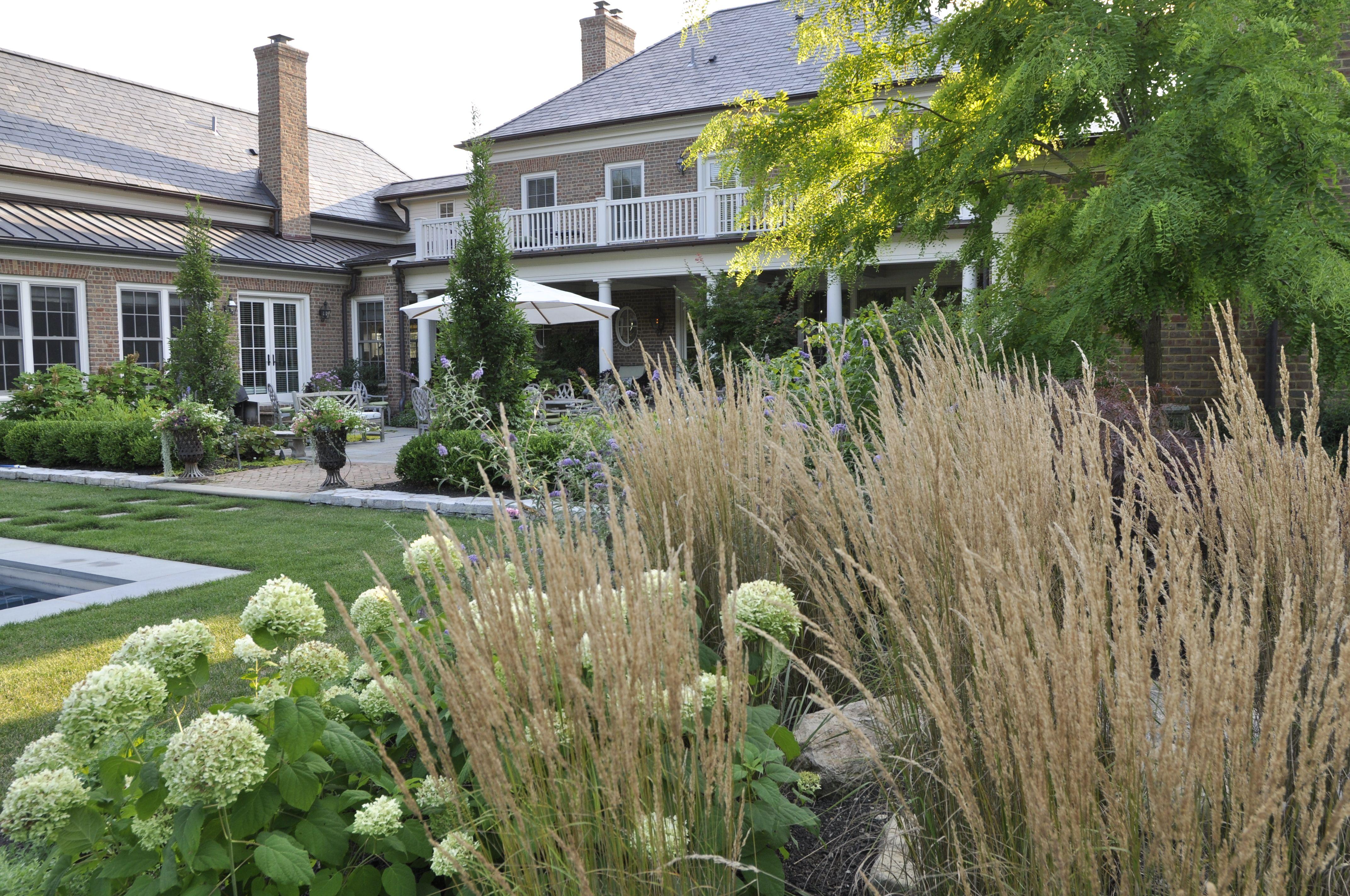 Perennial Garden Hydrangea Ornamental Grass Modern 640 x 480