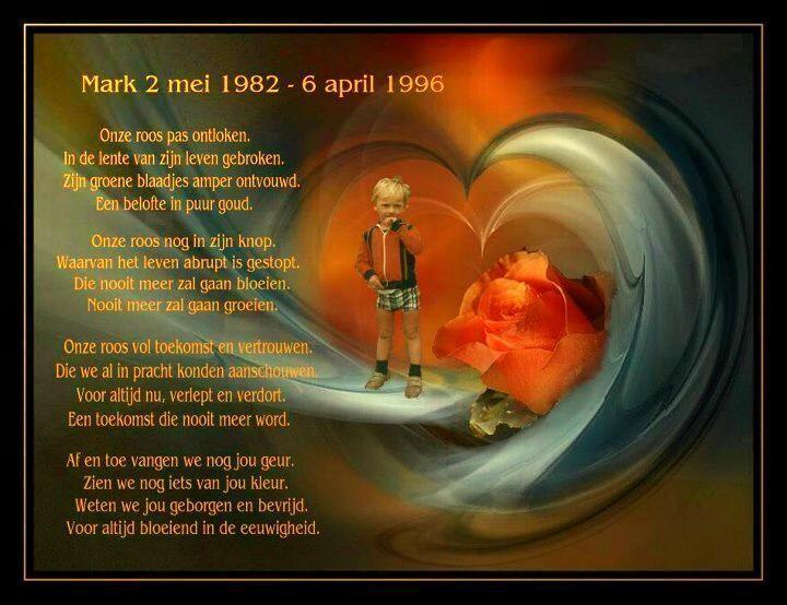 Onze roos, overleden door een noodlottig ongeval op 6 april 1996 te Maarheeze.