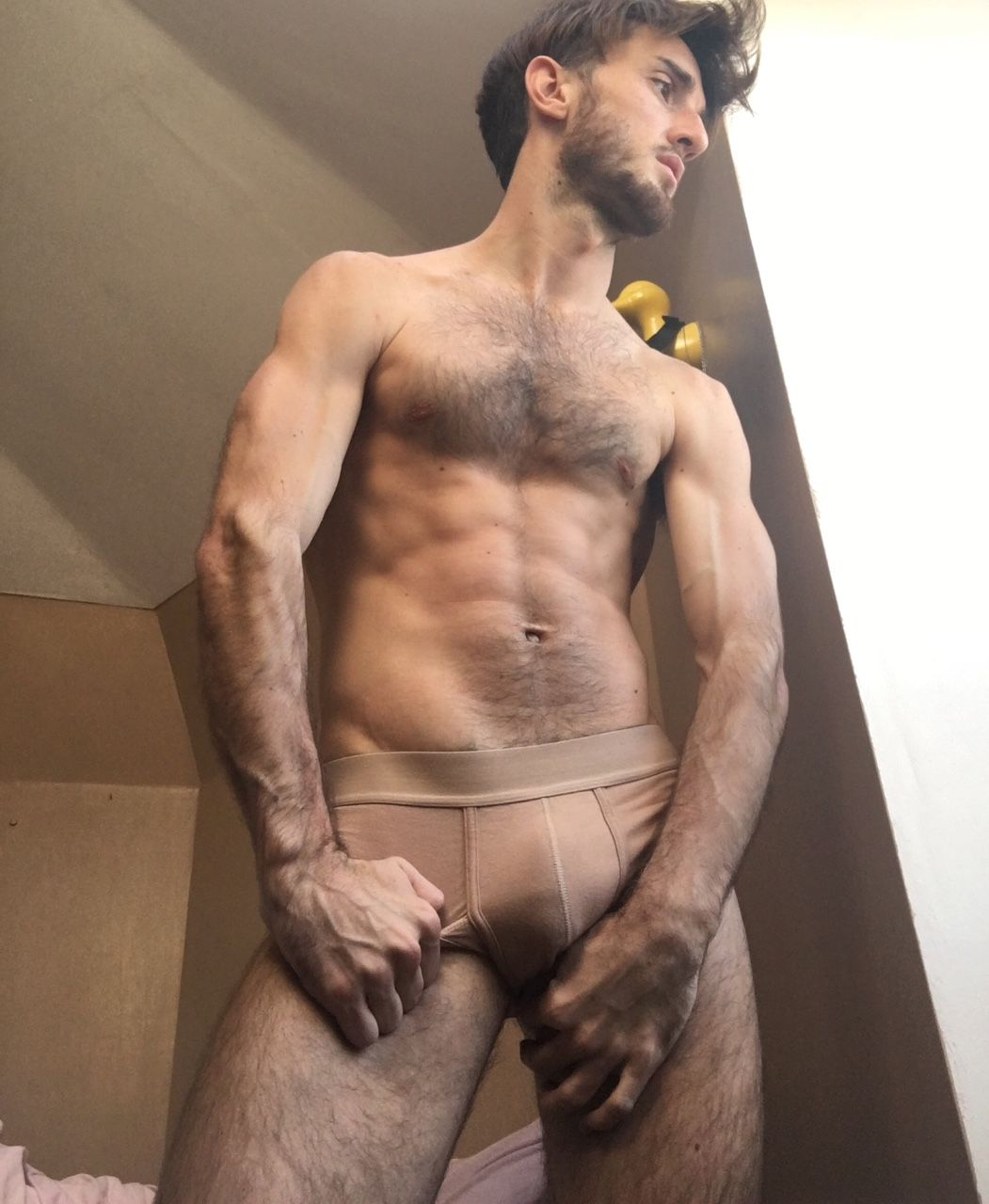 Guy hairy GAY chest sex