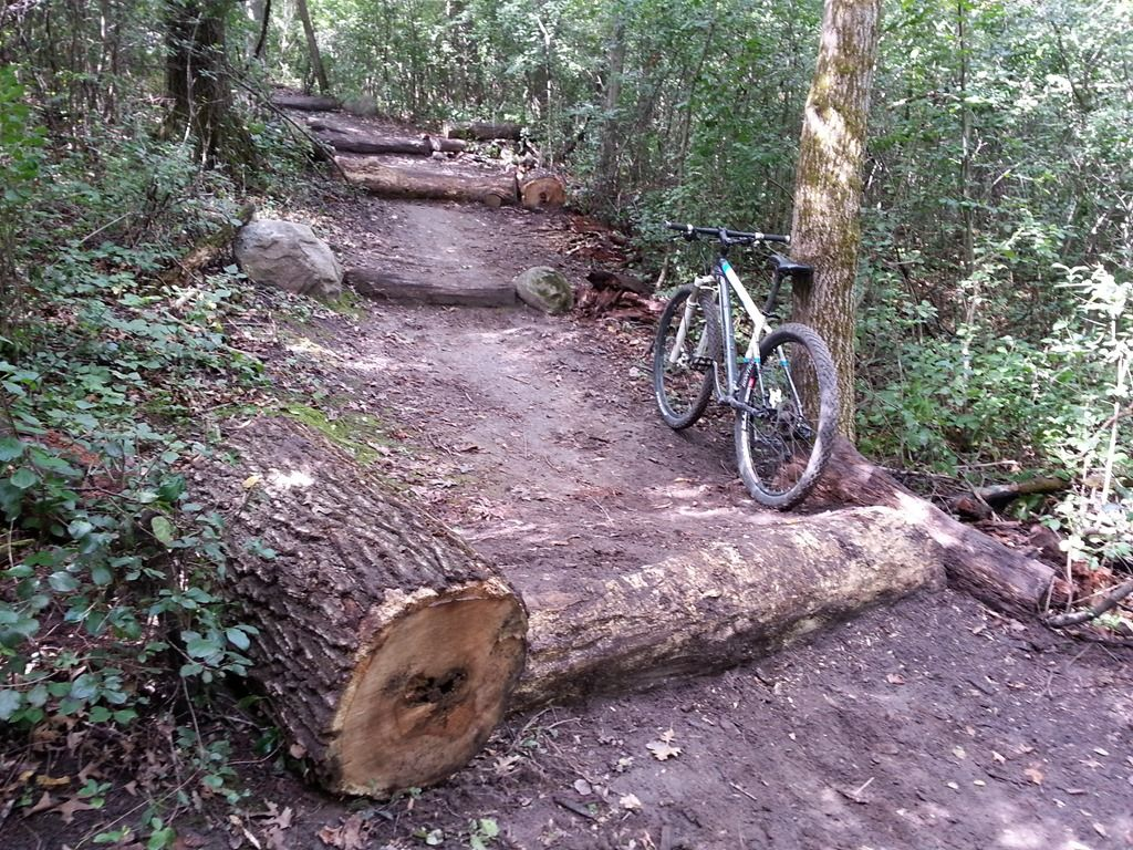 Log Stairs Mountainbike Obstacle Mountain Bike Trails Mtb