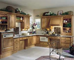 Beau Microwave And Dishwasher At Accessible Location. And Cut Outs Under Sink  And Stove Top