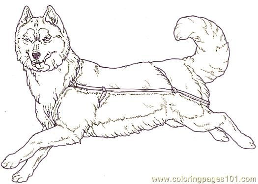 Sled Dog Coloring Pages Coloring Page Mural Tsb Sled Dog Facing Reverse Mammals Gt Dogs Dog Coloring Page Dog Sledding Coloring Pages