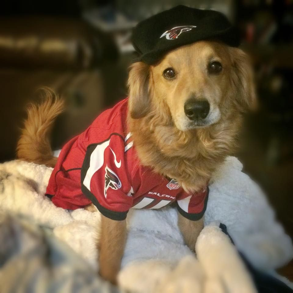 This guy loves the Falcons. #RiseUp