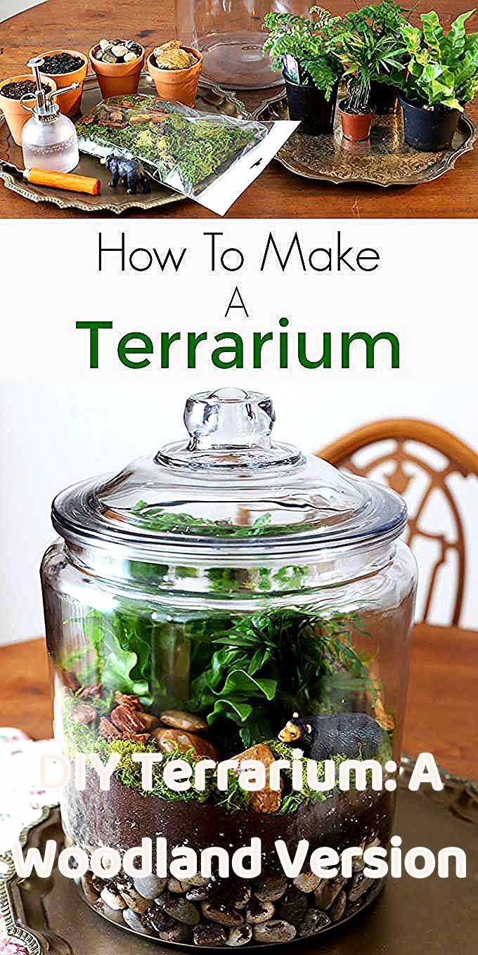 Easy step by step instructions for how to make a terrarium. Including the best terrarium plants, supplies needed and terrarium container ideas. #terrarium #diyhomedecor #gardening #gardeningideas #indoorgarden #indoorplants