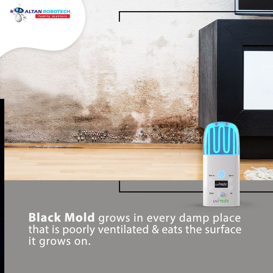 Mold has toxins that cause respiratory infection and can