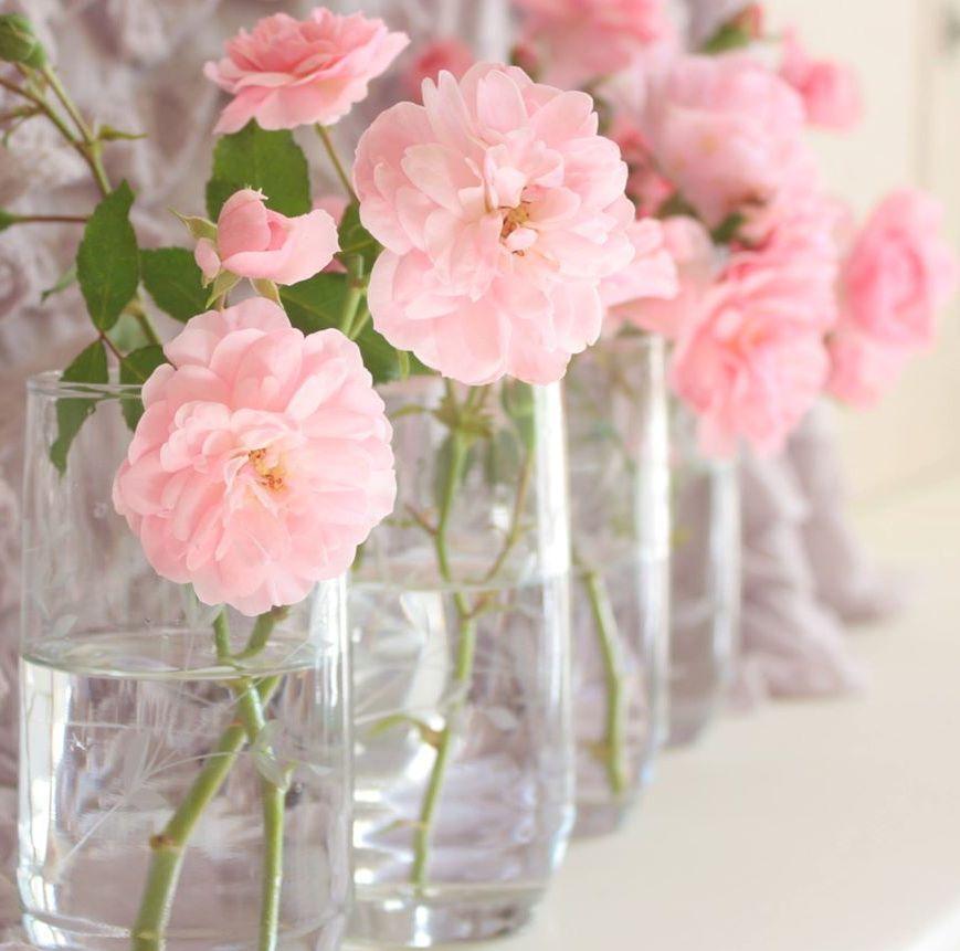 Pink Roses Vintage Tumblr