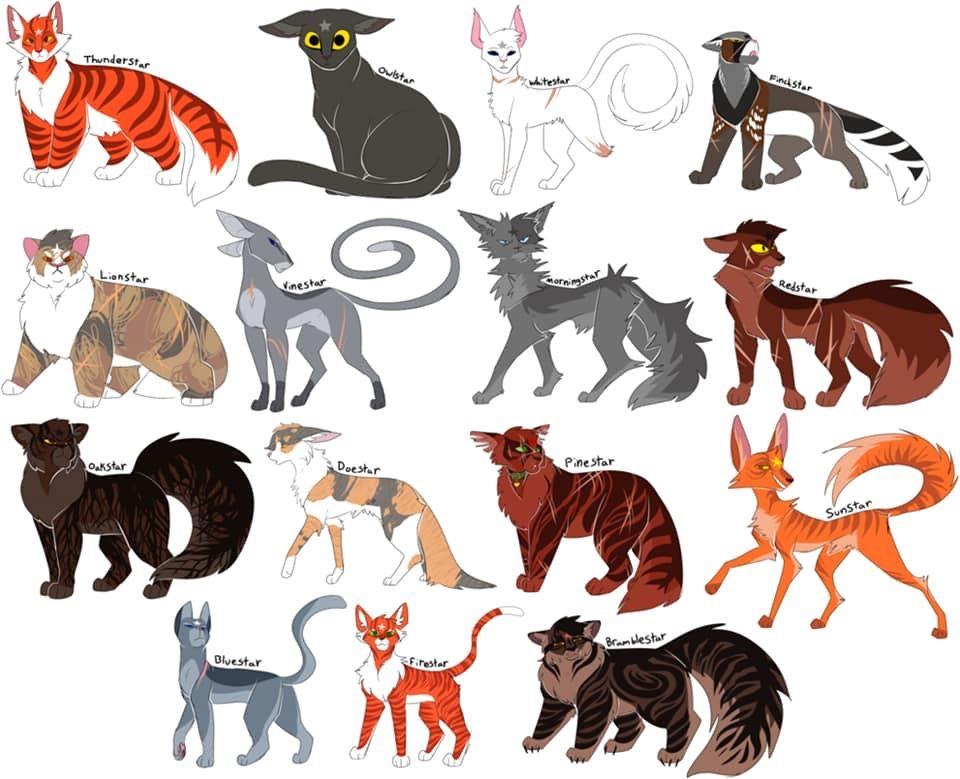 ThunderClan leaders | Warrior Cats | Warrior cats, Warrior