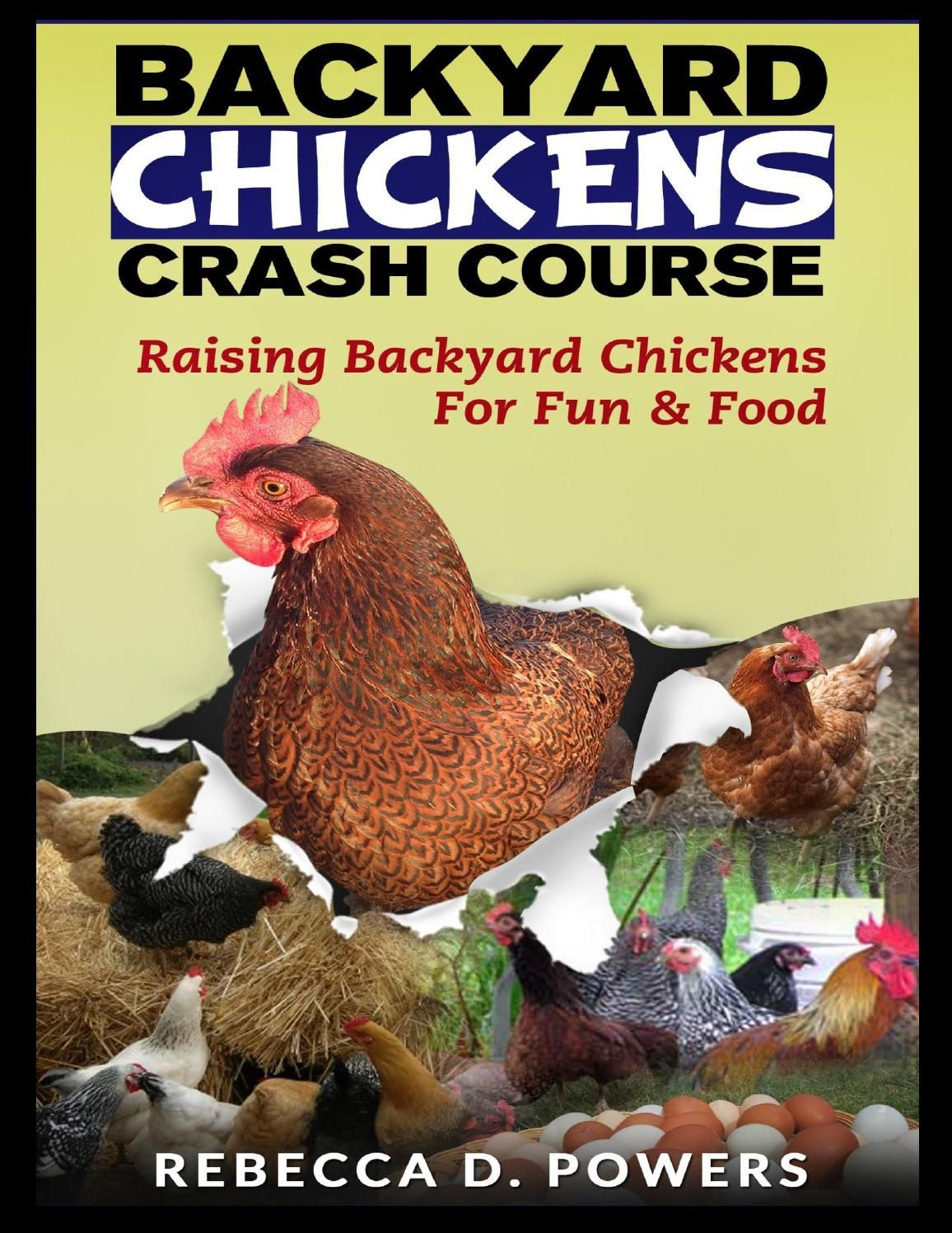 Have A Chicken Coop Up In 24 Hours (With images ...