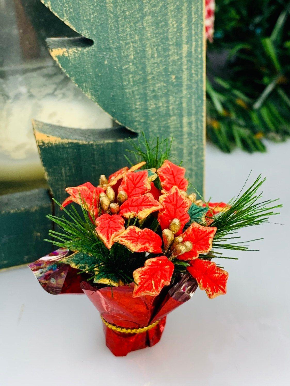 Miniature Poinsettia Christmas Plant Terrarium Accessory Etsy Fairy Garden Supplies Christmas Plants Fairy Garden Kit