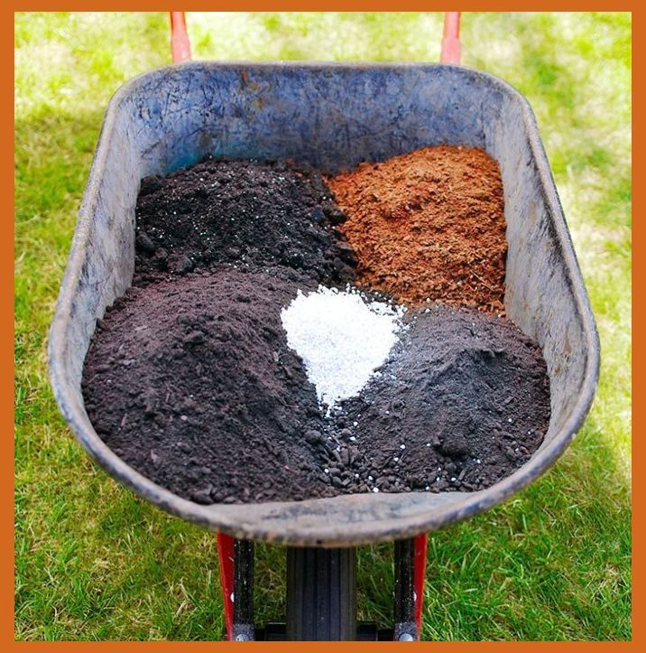 Garden Soil Prep Work For Home Garden Vegetable garden