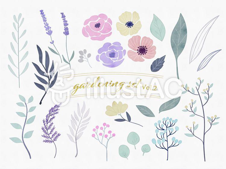 水彩手描きボタニカルセット2 水彩 植物 おしゃれ ボタニカル 自然 花 手描き かわいい ナチュラル ラベンダー ラベンダー イラスト 水彩 イラスト