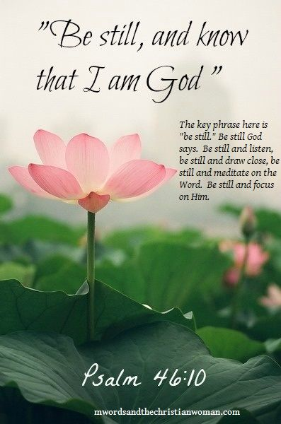 Psalm 4610 Be Still And Know That I Am God Flowers Verses
