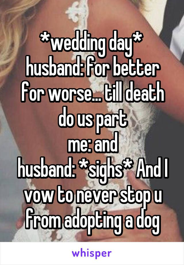 Wedding Day Husband For Better For Worse Till Death Do Us - Funny dog wedding photos will make your day