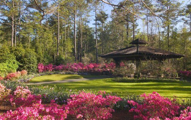 77c0146cf8842db84f47611795712cf7 - Places To Stay In Callaway Gardens Ga