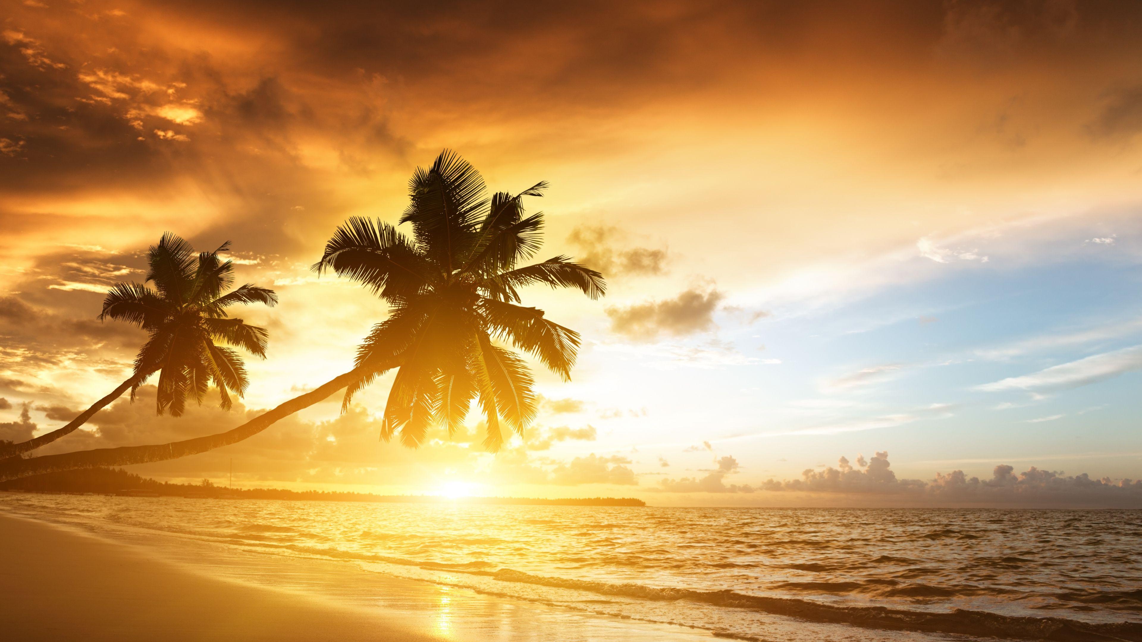 Download Wallpaper 3840x2160 Beach Tropics Sea Sand Palm Trees Sunset Evening 4k Ultra Hd Hd Backgrou Beach Wallpaper Sunrise Wallpaper Sunset Wallpaper