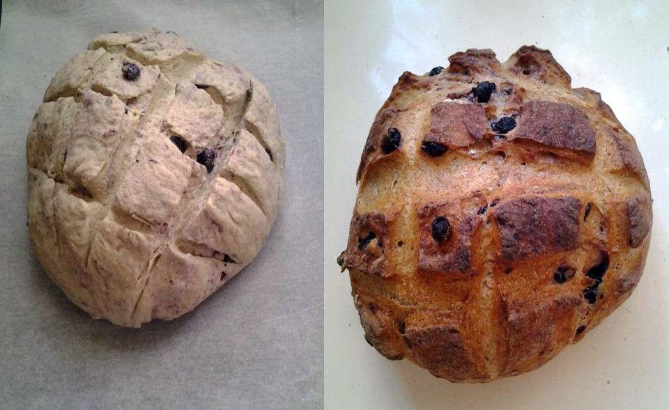 לחם שיפון-אוכמניות