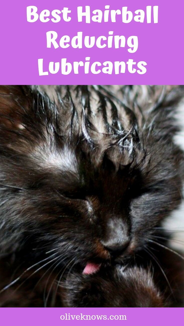 Best Hairball Reducing Lubricants Cat safety, Cat