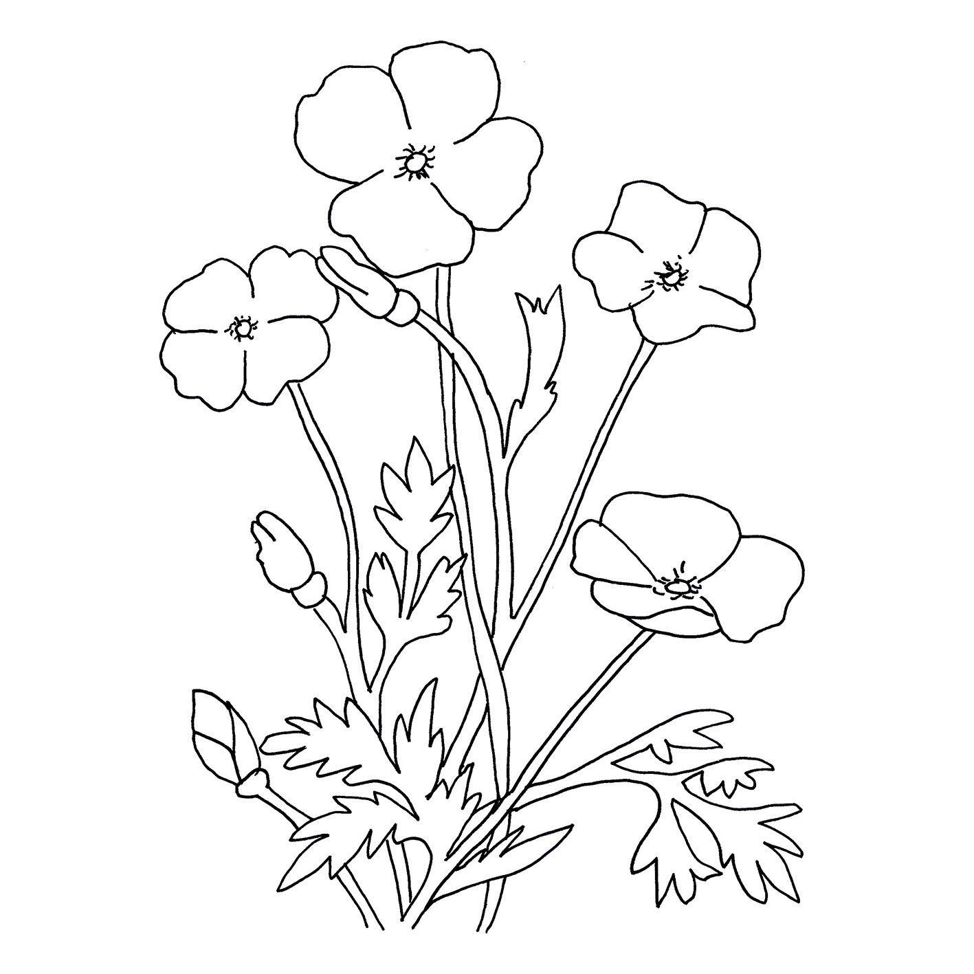 dibujos para colorear de flores grandes | flores lucy | Pinterest ...