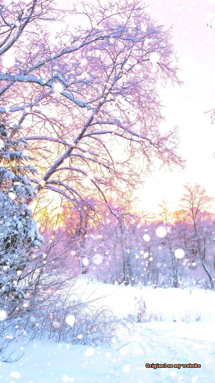 Meilleur Fond D Ecran 2019 Winter Wallpaper Beautiful Nature Beautiful Wallpapers